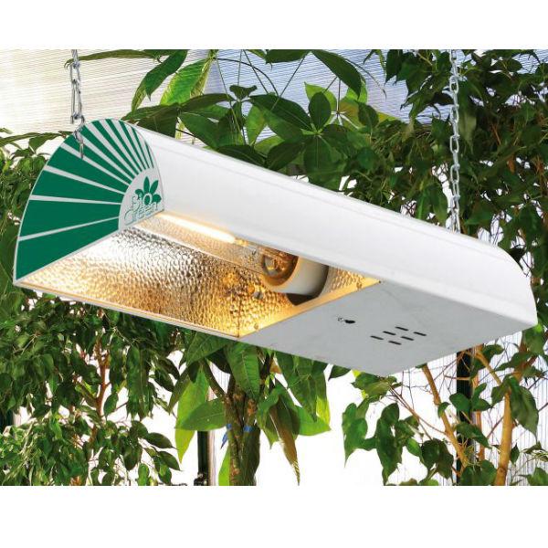 Groeilamp natriumlamp