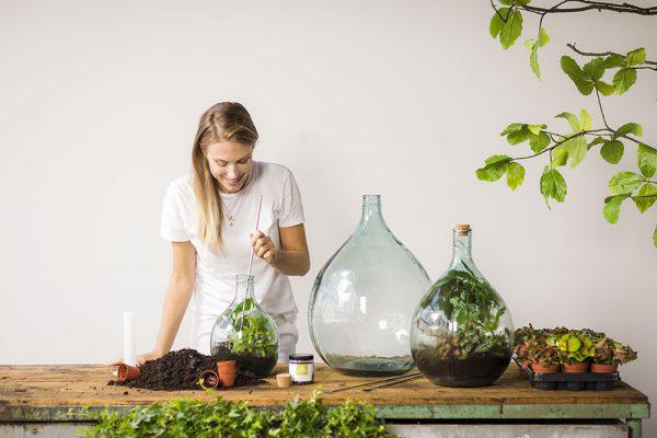 DIY plant terrarium Esschert Design